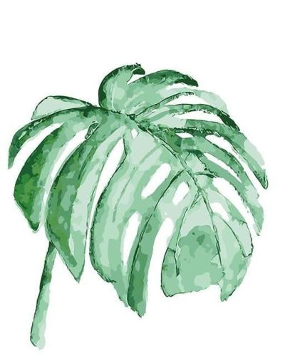 Leaf Diy Paint By Numbers Kits  BN94176