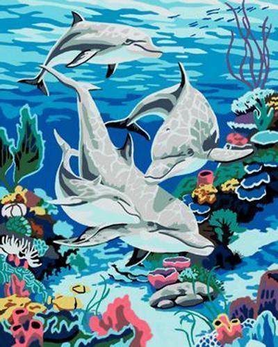 Dolphin Diy Paint By Numbers Kits B347