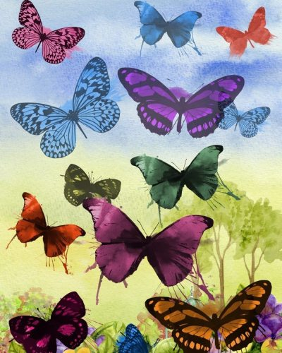 Butterfly Diy Paint By Numbers Kits BN93090