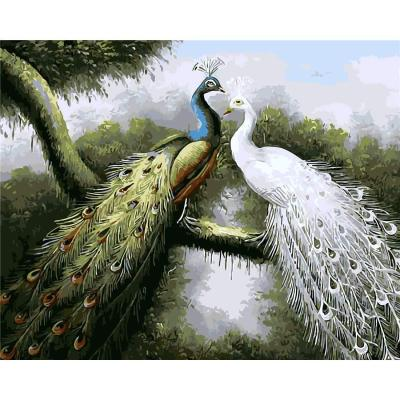 Peacock Diy Paint By Numbers Kits BN30016