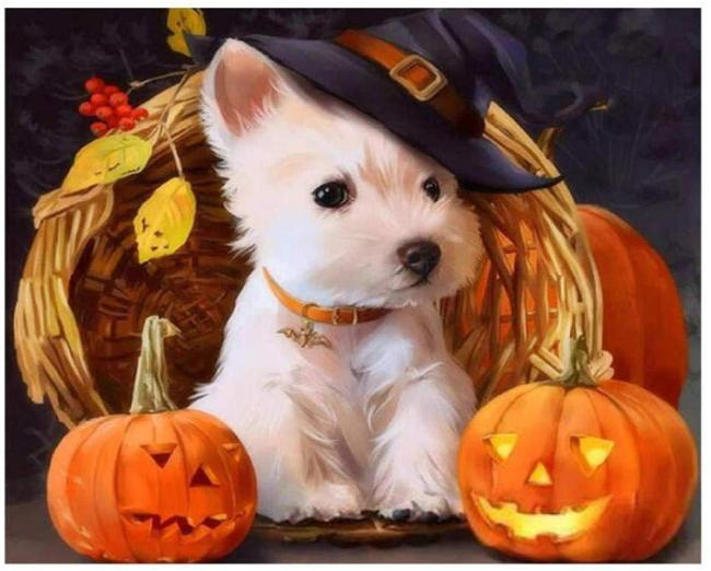 Halloween Dog Paint By Numbers Kits BN95270