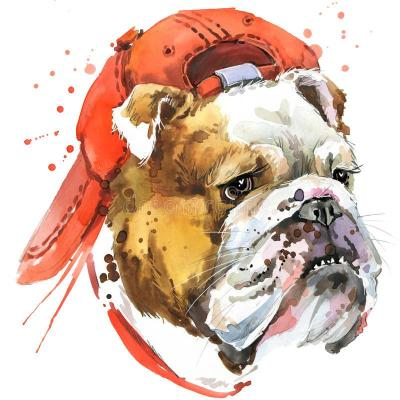 Dog Diy Paint By Numbers Kits BN94334