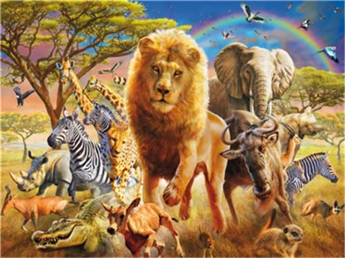 Hot Sale Animal Diy Paint By Numbers Y5488