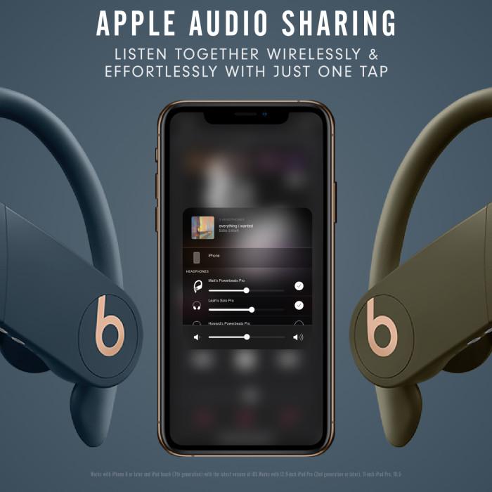 Beats Powerbeats Pro Totally Wireless Earphones – Moss