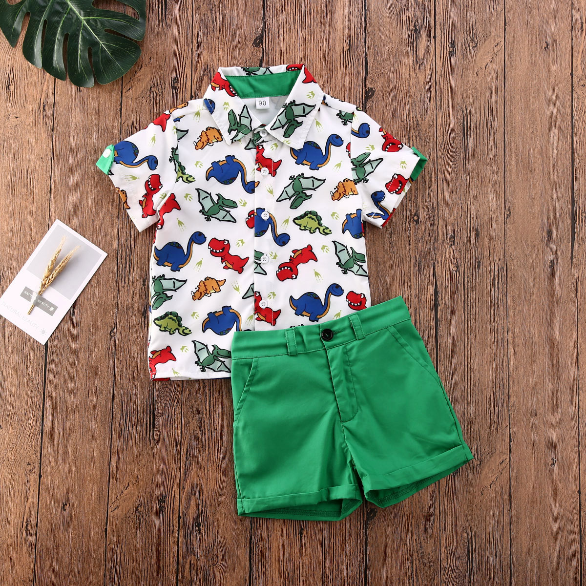 2pcs Dinosaur Print Polo-collar Set