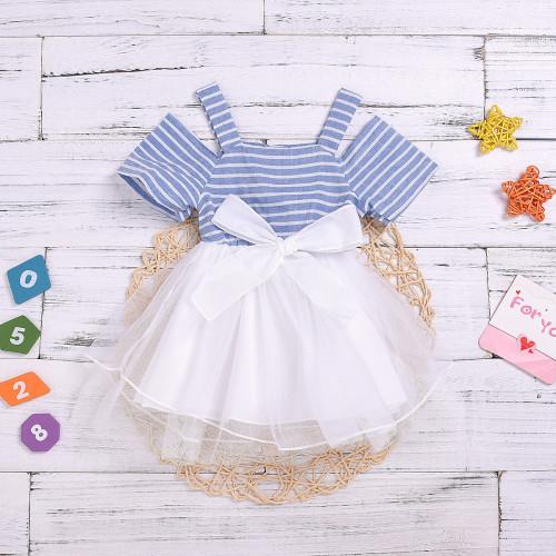 Stripe Print Mesh Dress