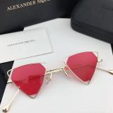 Small triangle cut out Sunglasses