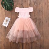 Multicolor Mesh Tight Dress