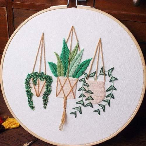 Embroidery Kit For Beginner| Modern Embroidery Kit with Pattern| Embroidery Hoop Plants |Craft Materials Included | Full DIY KIT Plants