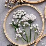 Plants transparent embroidery kit for beginner,Flower diy Kit,beginner Hand Embroidery Full Kit ,Diy start up embroidery set - English Guide