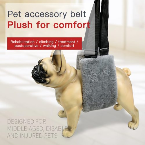 Pet  Auxiliary Belt Lift Support