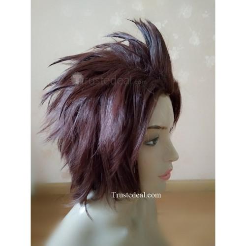 Kingdom Hearts Birth by Sleep Terra Brown Styled Cosplay Wig