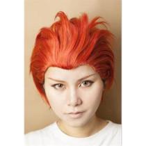 Free! Iwatobi Swim Club Seijuro Mikoshiba Orange Cosplay Wig