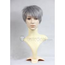Sword Art Online Kayaba Akihiko Heathcliff Short Gray Cosplay Wig
