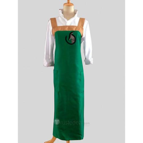 Blood C Fumito Nanahara Cosplay Costume Green Apron