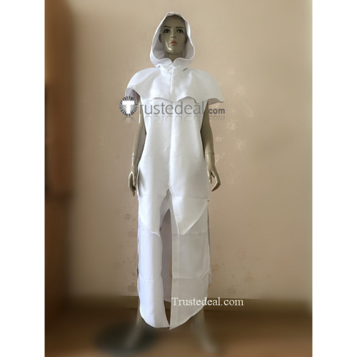 Assassin's Creed Altair Cloak Cosplay Costume