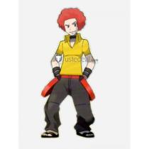 Pokemon Flint Sinnoh Elite Four Yellow Cosplay Costume