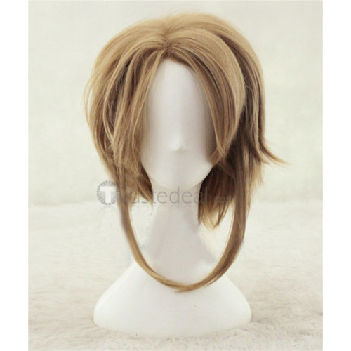 The Legend of Zelda Link Blonde Yellow Brown Cosplay Wigs