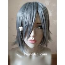 Hack Haseo Grey Cosplay Wig