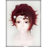 Kimetsu no Yaiba Demon Slayer Tanjiro Nezuko Kamado Zenitsu Agatsuma Giyu Tomioka Cosplay Wigs
