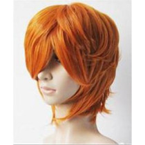 Panty & Stocking with Garterbelt Brief Cosplay Wig