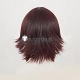 KonoSuba God's Blessing on this Wonderful World Megumin Brown Cosplay Wig