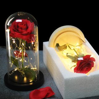Dropshipping Beauty And The Beast Red Rose In A Glass Dome With LED Light Wooden Base For Valentine's Christmas Day Gift
