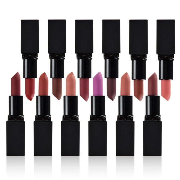 100pc Logo Customized Matte Lipstick Long Lasting Waterproof Makeup Lip Stick With Box 12 Color Mixed Lip Tint Design Your Logo