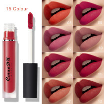 Matte non-stick lip gloss