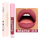 Matte non-stick cup liquid waterproof lip glaze