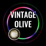 Vintage Olive