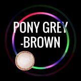 Pony Grey-Brown