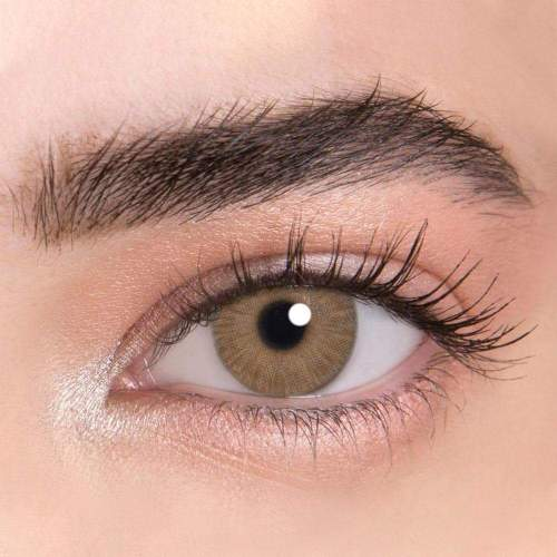 【LENSPOEM】New York PRO Brown Colored Contact Lenses