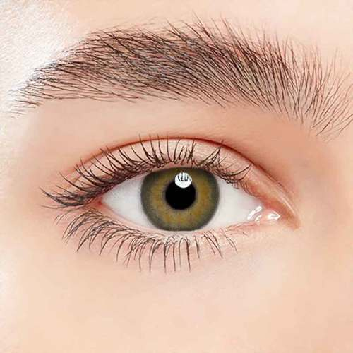 【LENSPOEM】Julia brown Colored Contact Lenses