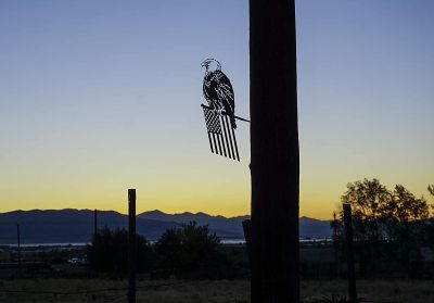 Metal Freedom Eagle Decoration