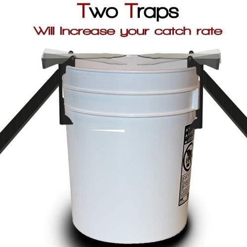 Flip N Slide Mouse Trap