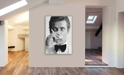 Roger Moore Canvas Painting Art