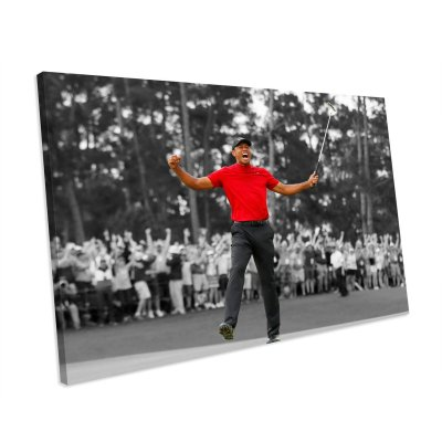 Tiger Woods 2019 Masters Win Canvas Wall Art