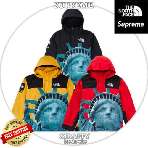 SUPREME コラボ ザ ノースフェイス 偽物 Statue Of Liberty Mountain Jacket
