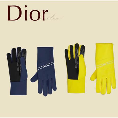 Dior SKI アンダー グローブ 手袋 コピー オブリーク 紺 黄 CD 新作 男 113C902A0691_C589