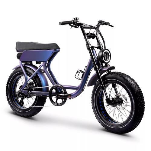 RHINO Electric Fat Bike