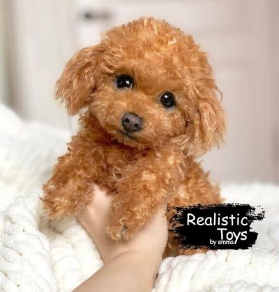 Emma Realistic Toys - Realistic & Lifelike Teddy Dog Rico