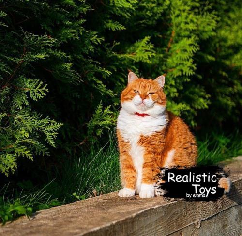 Emma Realistic Toys - Realistic & Lifelike Orange Cat   Abagail