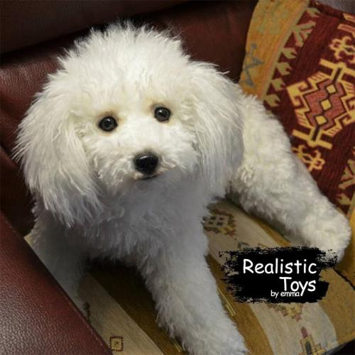 Emma Realistic Toys - Realistic & Lifelike Poodie Dog Maggie ,Companion Pet Dog with 100% Handcrafted Synthetic Fur