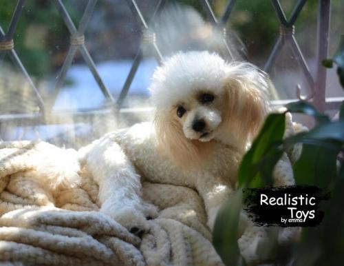 Emma Realistic Toys - Realistic & Lifelike Poodle Dog Ruby