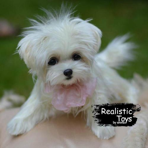Emma Realistic Toys - Realistic & Lifelike Maltese Puppy Pepper
