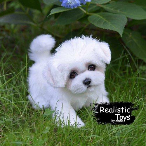 Emma Realistic Toys - Realistic & Lifelike Maltese Puppy Cici