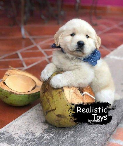 Emma Realistic Toys - Realistic Labrador Retriever Puppy  Kaley