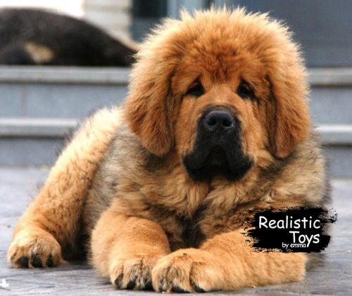 Emma Realistic Toys - Realistic & Lifelike Tibetan Mastiff Herman
