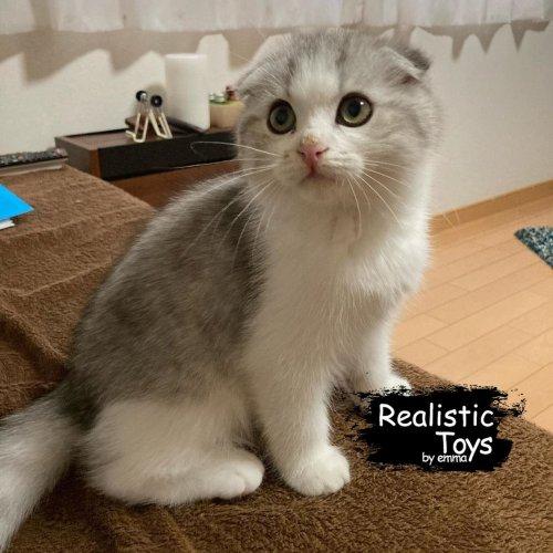 Emma Realistic Toys - Realistic & Lifelike Scottsish Fold Cat Lillianna
